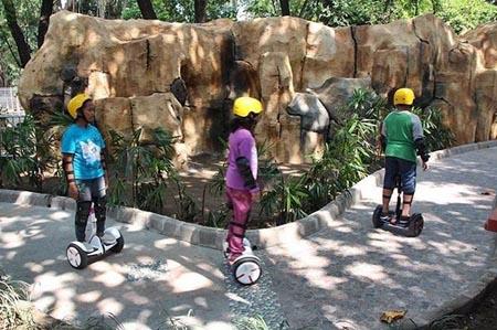 Obyek Wisata Kebun Binatang Gembira Loka Yogyakarta